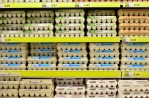 egg-1316407_1920