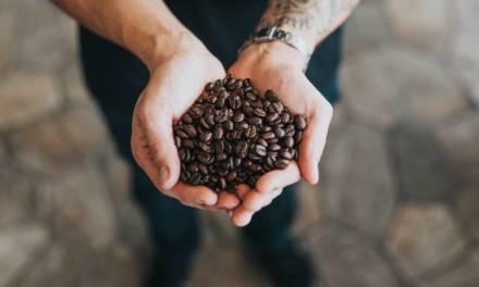 Cafea bio – Savureaza in tihna adevarata cafea fara de vina